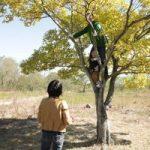 【わくわく野あそび隊】はじめての木登り体験をしませんか