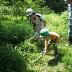 里山体験教室「下草刈りと草木染体験」