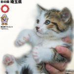 埼玉県庁で「保護犬・保護猫の譲渡会」を開催します!